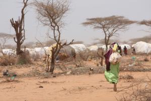 Dadaabin pakolaisleiri